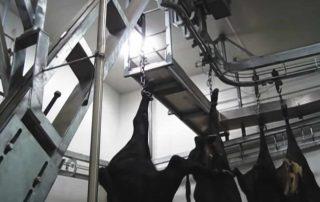 Body Lift Conveyor