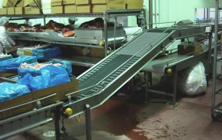Carton Conveyor