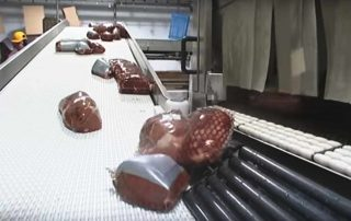 Meat Modular Belt Conveyor